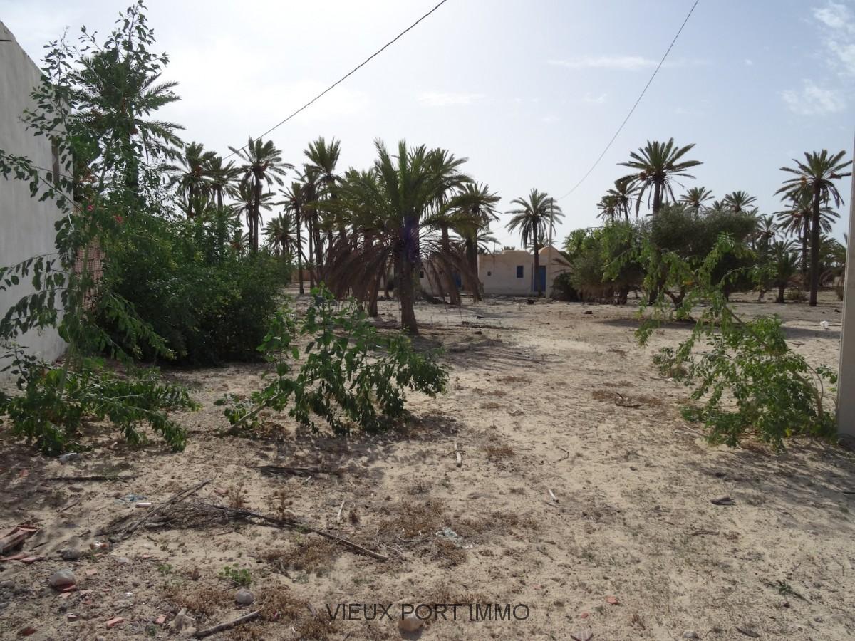 A vendre terrain avec permis de construire midoun for Permis de construire en zone agricole