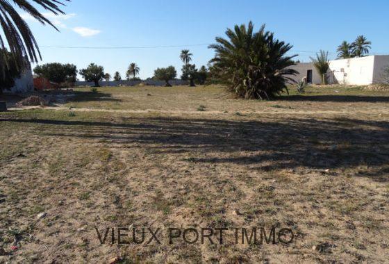 Agence immobili re du vieux port djerba tunisie for Permis de construire en zone agricole