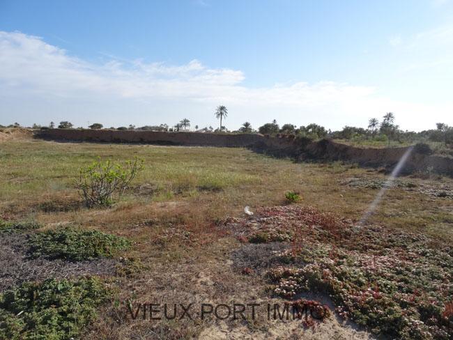 A vendre terrain batir avec permis djerba for Permis de construire en zone agricole